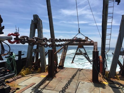 Grapple & Route Clearing with Miller Marine Services